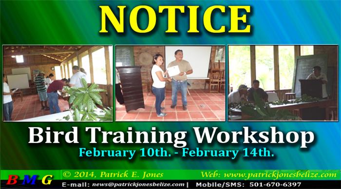 Bird Training Workshop (February 10 - February 14)