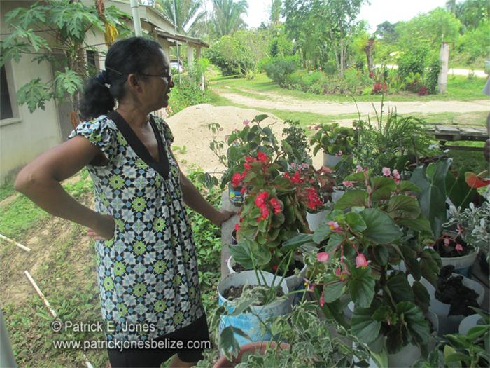 Jenny Chuc (Gardener, San Marcos village)
