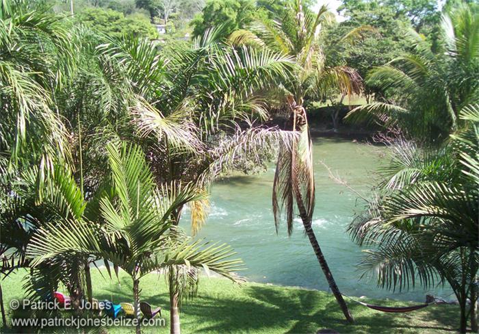 The Mopan River (Bullet Tree Falls village)