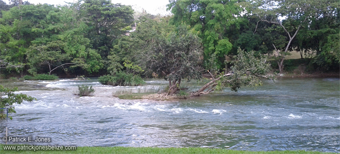 The Mopan River (Bullet Tree Falls village)