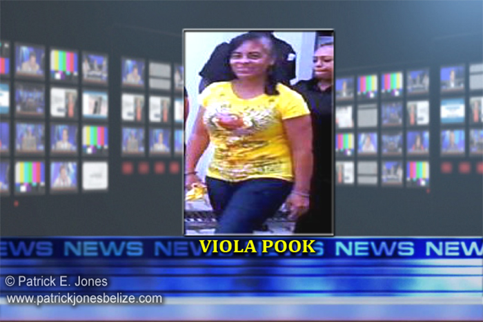 Viola Pook (New trial ordered)
