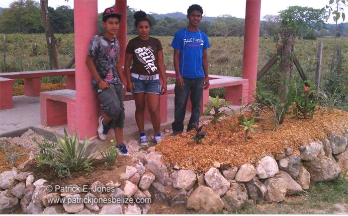 Garden project (Belize Botanic Gardens)