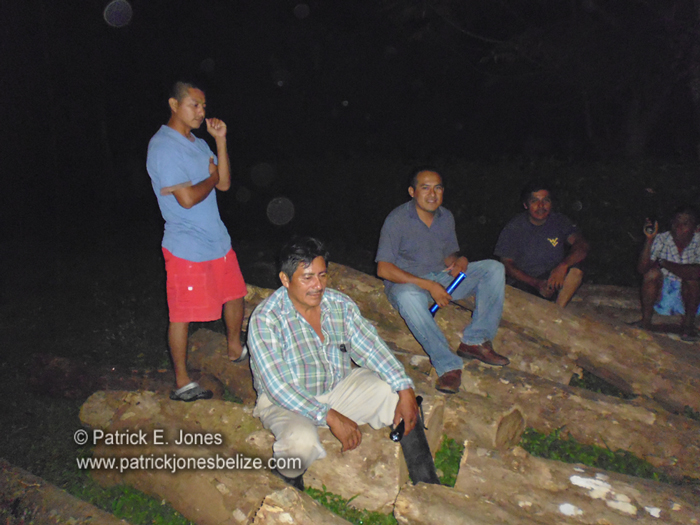 Maya leaders confiscate illegal rosewood logs (Toledo district)