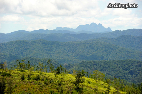 Chiquibul National Park (Cayo District)