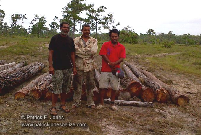 Carmelita village men (Charged for illegal logging)
