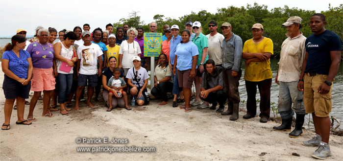 Mangrove Planting Project (Placencia village)