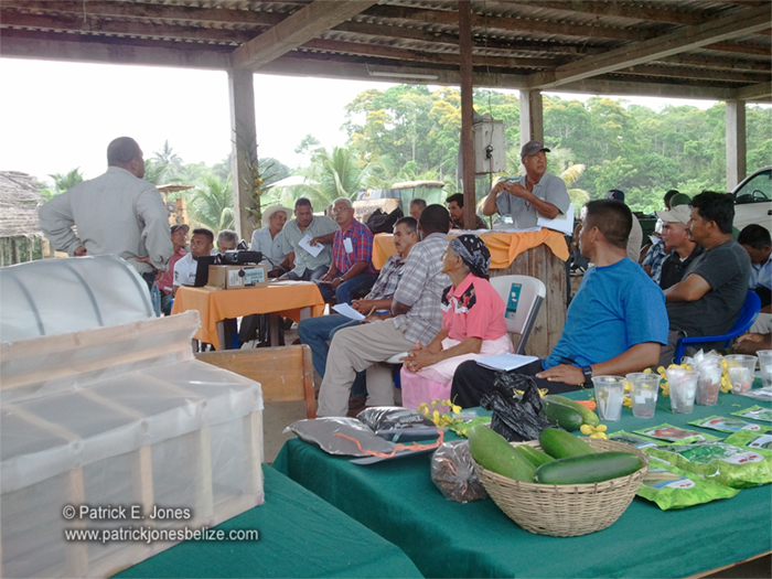 Vegetable farmers training (Toledo)
