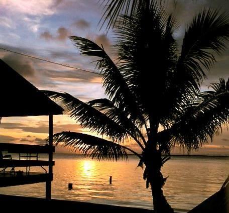blue-marlin-beach-resort
