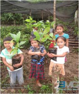 Even children are taught organic farming