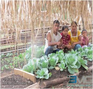Preparing organic farm beds