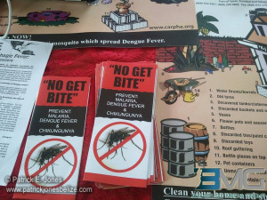 Mosquito-born diseases awareness