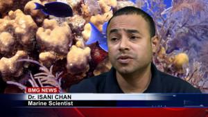 Dr. Isani Chan