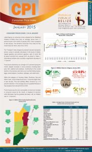 CPI statistics for January