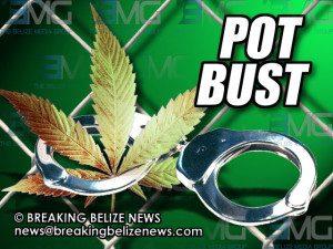 weed-bust-300x225