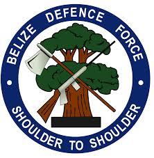 BDF logo