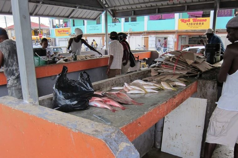 belize fish market