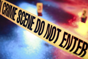 Santa Cruz resident is weekend's eight murder victim