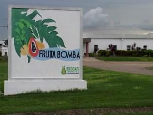 Fruta-Bomba0001