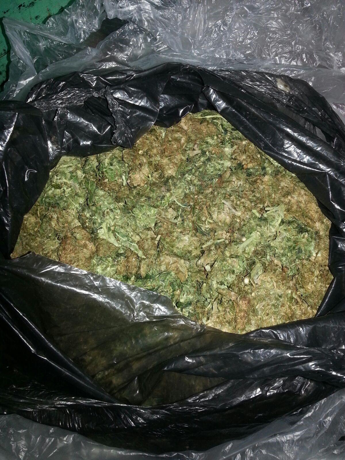 2.26 kilo weed