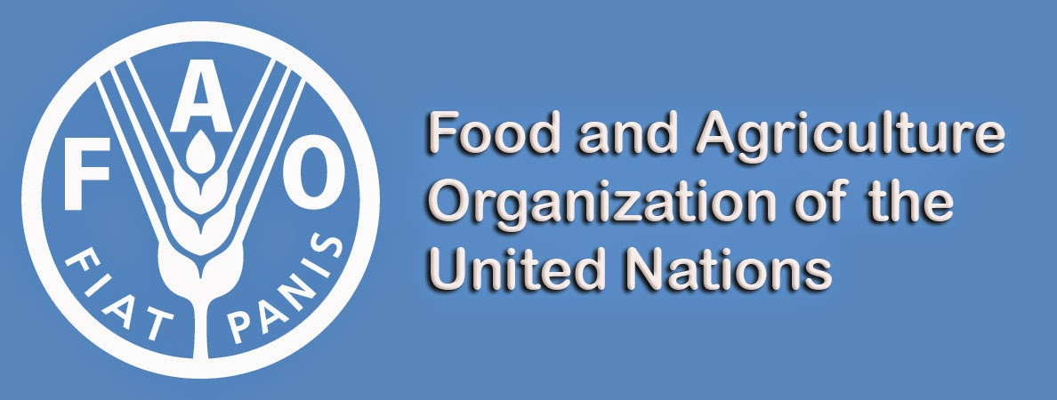 food and agriculture organization of the united nations fao essay According to the food and agriculture organization of the united nations (fao),  2001, most existing food security monitoring systems are used around four main .