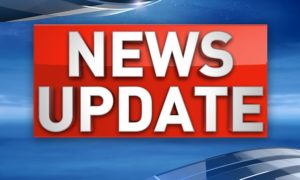 Police find weed and guns in Sandhill