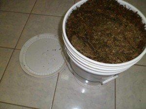 bucket of weed