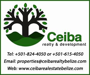 Ceiba Advertisement_BBN