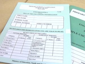 Primary School Examination (PSE),