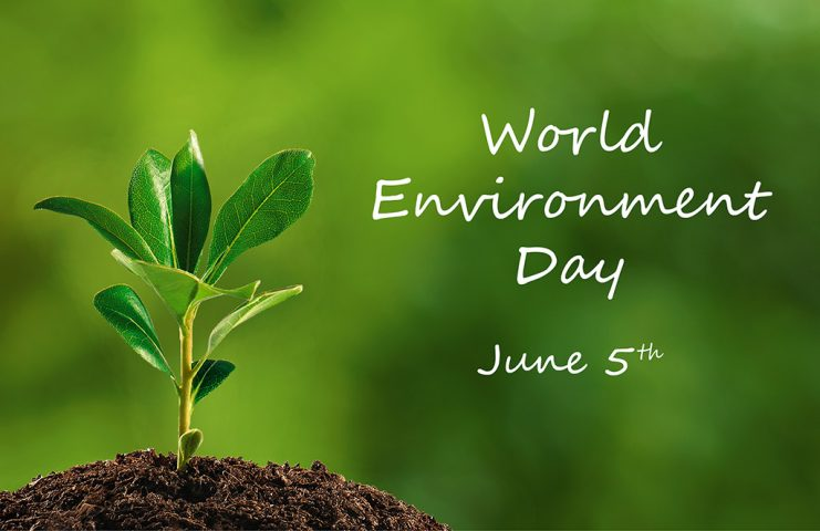 Paytm celebrates World Environment Day, dedicates homepage to Earth's biodiversity