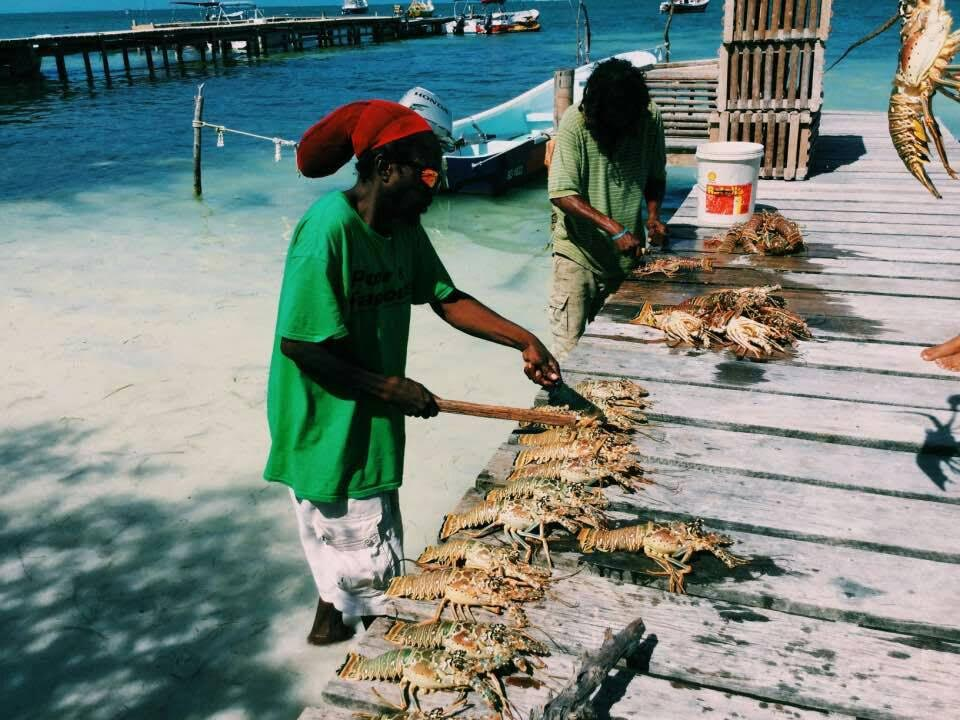Belize: The Value of Lobster to the Nation