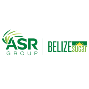 BsiAsr-logo
