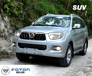 suv-300x250-1