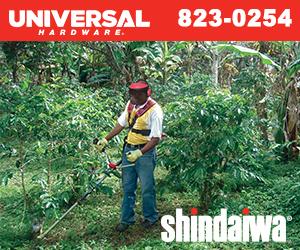 Shindaiwa 300x250px