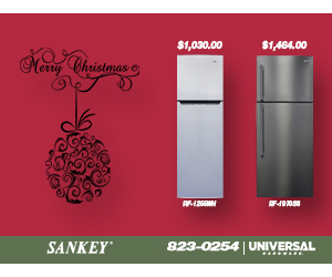 sankey-fridge-300x250