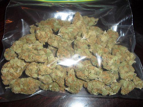 weed-dec-2
