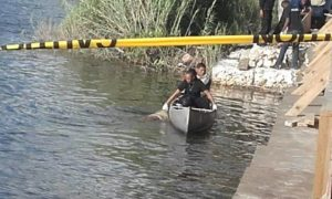 Police issue official report on body found
