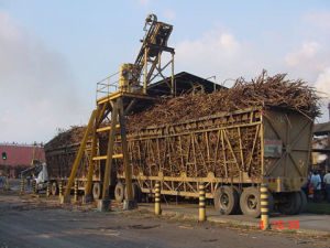 Sugar drives export increase for first half of 2017