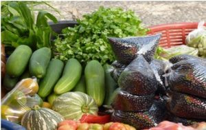 The World Agro-Market is calling for Belizean products