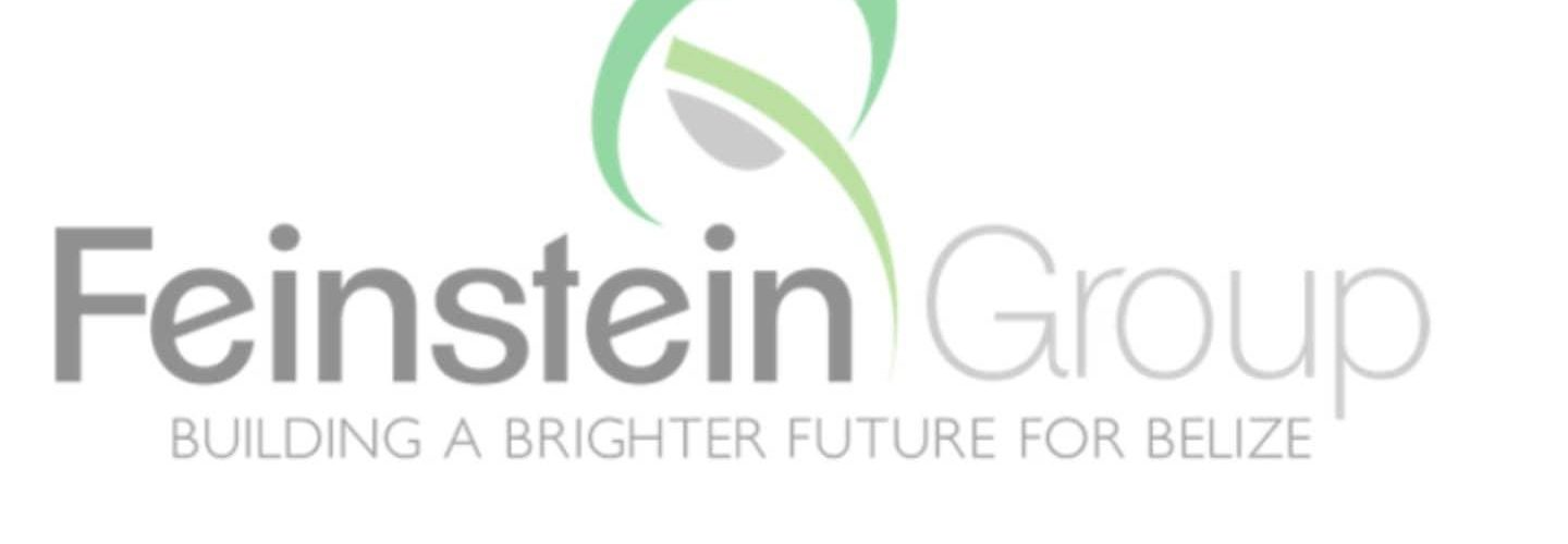 Feinstein group announces start of Stake Bank construction
