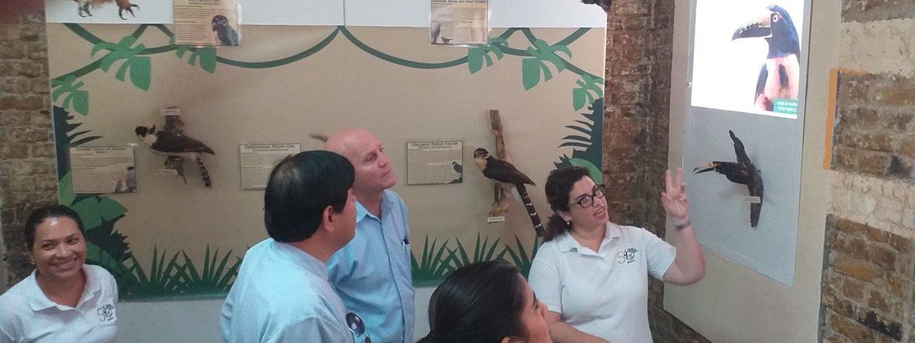Museum of Belize launches new Bird exhibit