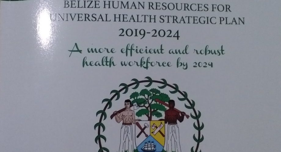 Ministry of Health launches five-year human resource strategic plan