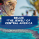 This Is The Belize Guide Book You Need to Read This Summer