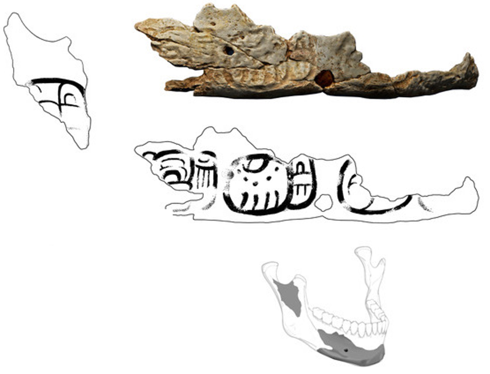 "Archaeologists link Maya demise to ""trophy skulls"""