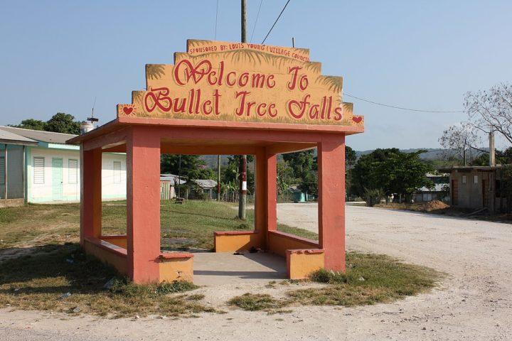 bullet tree
