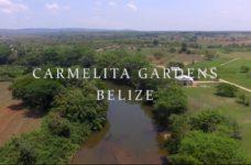 carmelita gardens belize