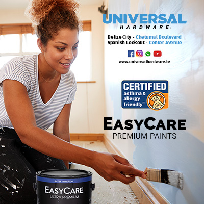 Easy Care Premium Paint