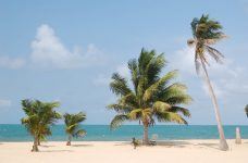7 Great Reasons To Buy A Condo In Placencia Belize Right Now
