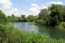 how to purchase real estate in belize