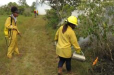 Belize Zoo and Tropical Education Center trains 12 in basic fire management