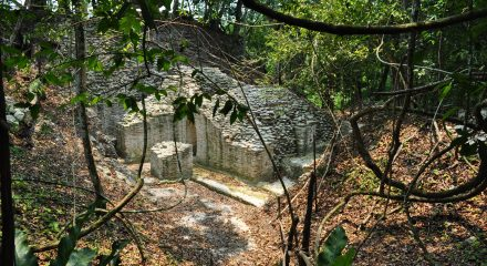 4 Tourists robbed at gun point by 'Guatemalan Bandidos' at El Pilar Archaeological Site